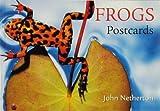Frogs, Badger, David, 0896583074