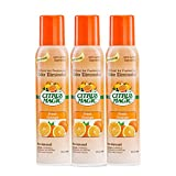 Citrus Magic Natural Odor Eliminating Air Freshener Fresh Orange, Pack of 3, 3-Ounces Each