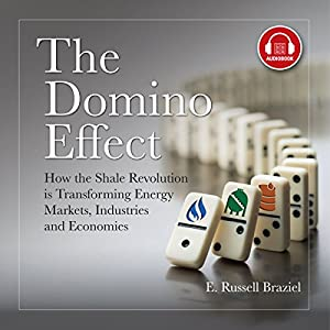 The Domino Effect Audiobook