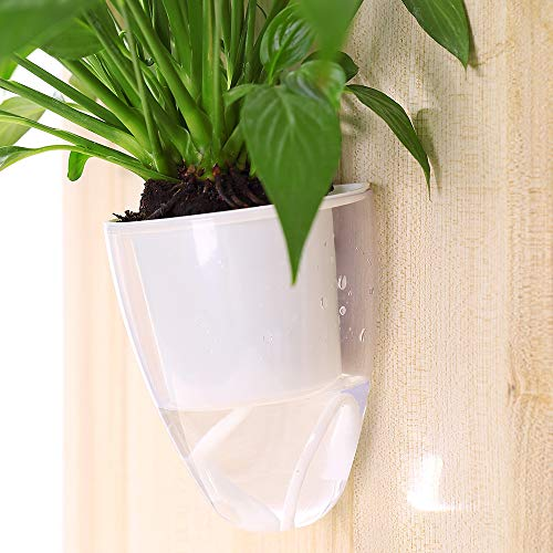 3 Pack Self Watering Wall Planters,Clear Plastic Wall Planters Flower Pots Indoor Outdoor Window for All Plants, Succulents, Herb, African Violets, Flowers (Small)