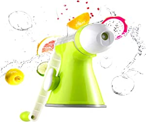 Angel Multifunctional Juicer, Fruit Juicing and Ice Cream Machine, Baby Manual Food Supplement Juice, Residue Separation, for Using in Home Kitchen