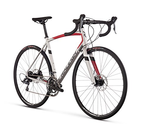 Raleigh Bikes Merit 2 Endurance Road Bike, Silver, 52cm/Small
