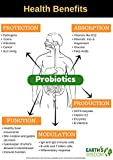 Probiotic 50 Billion CFU. Natural & Potent, 30