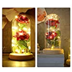ALLOMN-Beauty-and-The-Beast-Red-Silk-Rose-in-Glass-Dome-Preserved-Flowers-LED-Light-with-Fallen-Petals-on-a-Wooden-Base-Gift-for-Valentines-Day-Anniversary-Wedding-Birthday