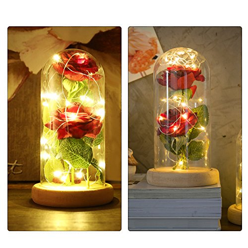 Beauty and the Beast Rose Preserved Never Withered Rose 20-LED Strip light and 2PCS Artificial Silk Rose with Glass Lampshade Warm White DIY for Home Decor, Great Gift For Wedding And Mother's Day