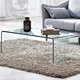 Premium Tempered Glass Coffee Table,Clear Coffee Table, Small Modern Coffee Table for Living Room,Match Well with Rug (40x20x