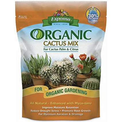 Amazon Espoma Ca4 4 Quart Organic Cactus Mix Succulent