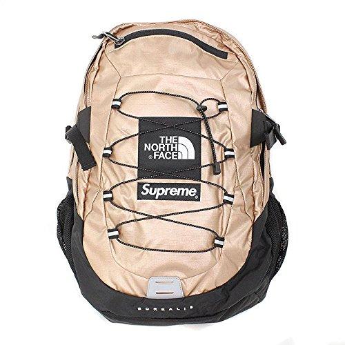(シュプリーム) SUPREME ×ノースフェイス/THE NORTH FACE 【18SS】【Metallic Borealis Backpack】メタリックバックパック(ピンク) 中古 B07DH5PS4D