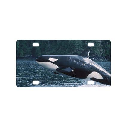 Amazon Bernie Gresham License Plate Cover Killer Whale Metal