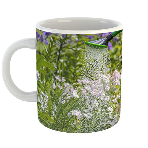 Westlake Art - Garden Flora - 11oz Coffee Cup Mug - Modern Picture Photography Artwork Home Office Birthday Gift - 11 Ounce (F9F3-716C1) (Compost Mulch Starter)