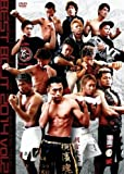 Martial Arts - The Outsider 2014 Vol.2 Best Bout [Japan DVD] DSL-10062