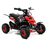 FunBikes 800w Electric Kids Mini Quad Bike Mini Moto ATV - Ride on toy boys girls (Red)