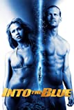 DVD : Into The Blue