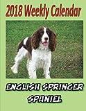 2018 Weekly Calendar English Springer Spaniel