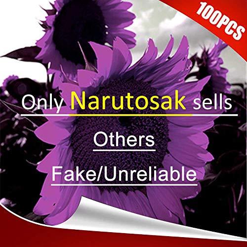 fe75b46c2644 Narutosak 100Pcs Rare Purple Sunflower Seeds Beautiful Flower Home Garden  Ornament Plant - Purple Sunflower Seeds