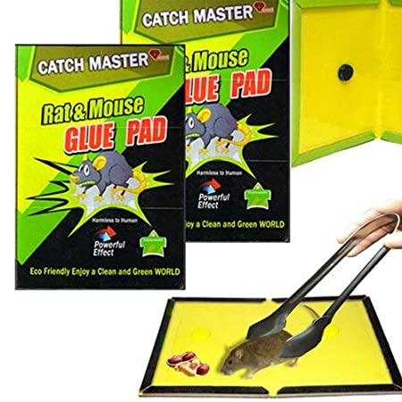 Mouse, Insects, Rodents, Lizard Rat Trap Catcher Non Toxic Glue Pad with Picker and Food (Pack of 2)