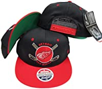 Detroit Red Wings Black / Red Two Tone Plastic Snapback Adjustable Plastic Snap Back Hat / Cap