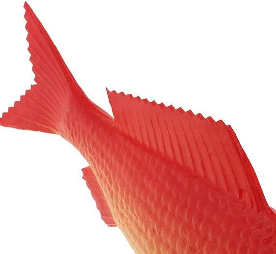 D DOLITY Modelo Pez Carpa Roja de Pl/ástico Juguetes Material Educativo