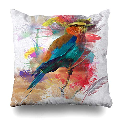 - Ahawoso Throw Pillow Cover Feather Abstract Bird Colorfull Lilac Paint Nature Breasted Roller Splatter Home Decor Cushion Case Square Size 18