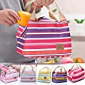 Storage Bag - 1pc Quanlity Women Insulated Lunch Box Carry Storage Bag Stripe Insulation Waterproof - Small Suitcase Rzr Red Quilt Kitchen Table Hanger Heavy Jumbo