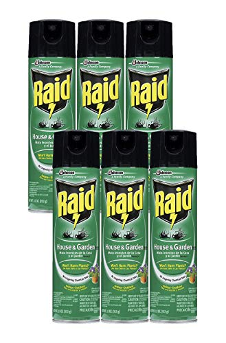 Raid House Garden Bug Killer, 11 OZ (6)