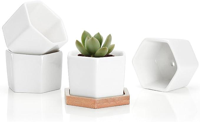 Ceramica de cactushttps://amzn.to/34w0RhU