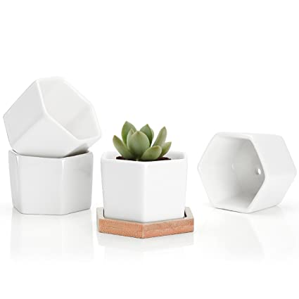Genial Greenaholics Succulent Plant Pots   2.76 Inch Small Ceramic Hexagon  Containers, Cactus Planters, Flower