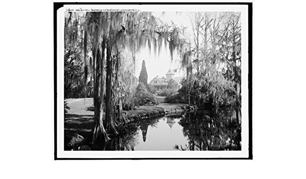 Plantations Vintage Photo Reproduction Magnolia Gardens INFINITE PHOTOGRAPHS 1910 Photo: Ashley Hall Charleston South Carolina