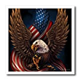 3dRose America, American, Flag, Eagle, Illustration - Bald eagle with and American Flag between its talons - 6x6 Iron on Heat Transfer for White Material (ht_252437_2)