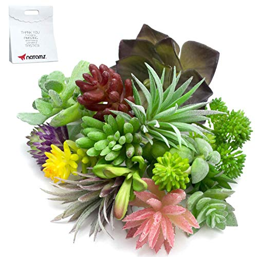(Artificial Succulent Plants Faux Assorted - 16 PCS Unpotted Succulent Plants Arrangement Textured Cactus Stems Pick - Fake Cacti Aloe Succulent Variety Floral Decorative Bouquet Pack With a Gift)