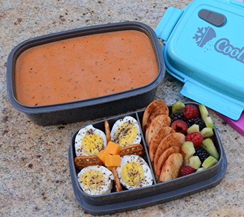 coolbites premium bento lunch box bpa free leakproof multi compartment new top lunch box. Black Bedroom Furniture Sets. Home Design Ideas