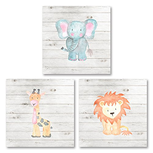 Sagebrush Fine Art Adorable Zoo Baby Elephant, Giraffe and Lion Set (Printed On Paper), Perfect for a Child's Room Or Nursery; Three 12x12in Unframed Paper Posters