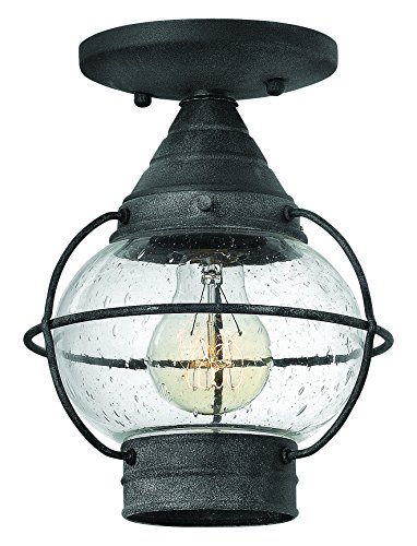 Hinkley 2203DZ Nautical One Light Flush Mount from Cape Cod collection in (Cape Cod Outdoor Fixture)