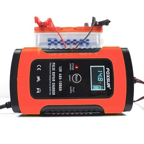 Hehilark Foxsur - Cargador de batería para Moto y Coche (12 ...