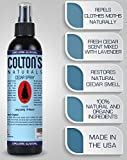Colton's Naturals Cedar Spray – 4 Ounce – with Lavender Extract – Non-Chemical Wood Protection – for Cedar Wood – Restores Scent – Moth Removal 4oz Bottle – Closets & Drawers