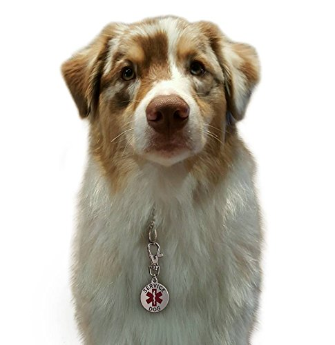 Service Dog ID Tag Double Sided for Animal Collar by The Dog's Right! (Image #2)