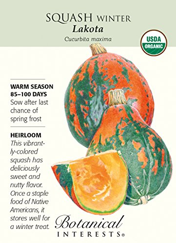 Organic Lakota Winter Squash Seeds - 2 grams - Botanical Interests (Botanical Garden Seeds)