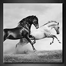 First Wall Art - Black And White Horses In Summer Black And White Running On Freedom Grassland Wall Art Painting The Picture Print On Canvas Animal Pictures For Home Decor Decoration Gift (Stretched By Wooden Frame,Ready To Hang)
