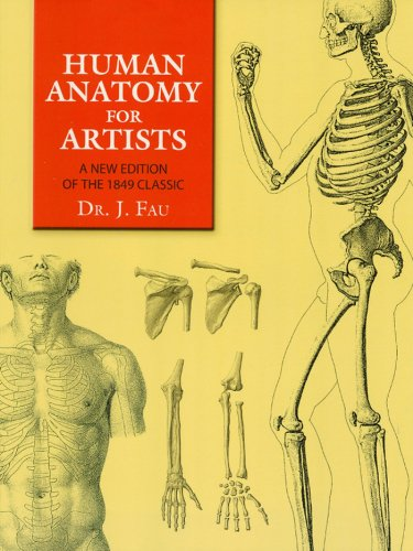 Human anatomy for artists a new edition of the 1849 classic with human anatomy for artists a new edition of the 1849 classic with cd rom fandeluxe Gallery