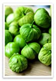 verde tomato seeds - Vegetable Seeds - 50 Seeds of Organic Mexican Husk Tomato TOMATILLO Seeds salsa verde essential Non Gmo