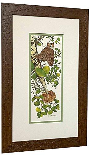 (Bev Doolittle WHOO WHOO? Matted & Framed Art Print Owl Beaver)