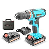 Qisiewell 21V Lithium-Ion Cordless Drill Driver 1.3 A 3/8 Inch Impact Driver Max Torque 30 N.m Variable Speed 18+1 Torque Setting with LED Light Quick Charger and Two 21V batteries