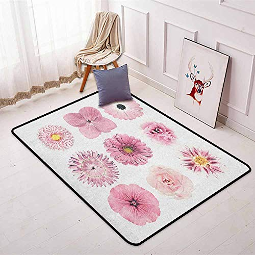 (Pink and White Bedroom Carpet Botanical Daisy Chrystanthemum Cornflower Dahlia Iberis Primrose Gerbera Set for Various Areas W35.4 x L47.2 Inch Dried Rose)