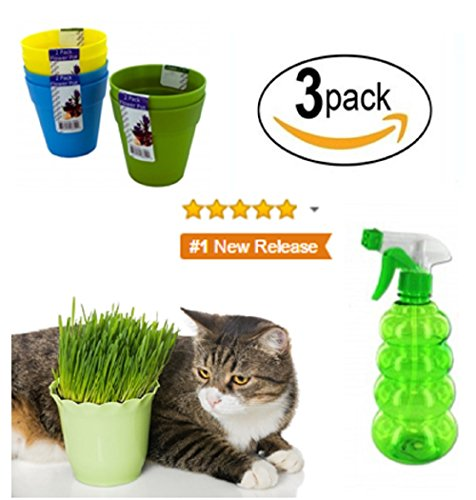 premium-wheatgrass-cat-grass-seeds-hard-red-wheat-for-shots-juicers-trays-kits-and-planters-high-ger