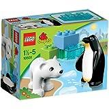 Lego Duplo 10501 - Polartiere