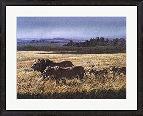 - Lion Pride by Don Balke Framed Art Print Wall Picture, Espresso Brown Frame, 31 x 25 inches