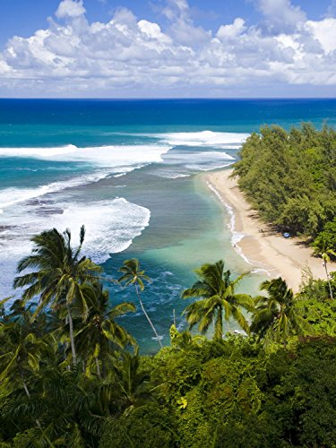 (Wallmonkeys Kee Beach from Kalalau Trail Wall Decal Peel and Stick Graphic WM77469 (30 in H x 23 in W))