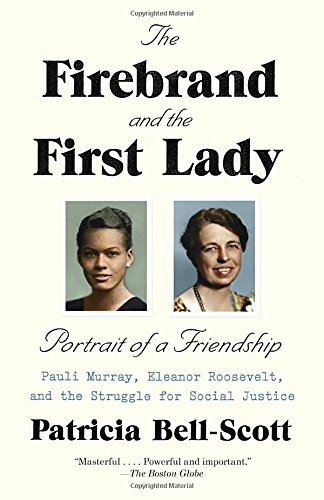 Search : The Firebrand and the First Lady: Portrait of a Friendship: Pauli Murray, Eleanor Roosevelt, and the Struggle for Social Justice
