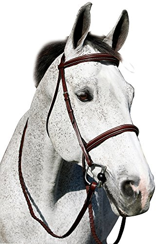 Bridle Padded Raised (Henri de Rivel PRO PLAIN RAISED PADDED BRIDLE W/ANTI PRESS HEAD PIECE, AUSTR NUT, HORSE)