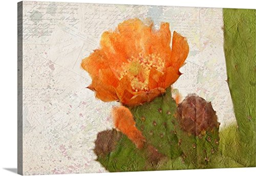 greatBIGcanvas Gallery-Wrapped Canvas entitled Cacti Flower by Kimberly Allen 48''x32'' by greatBIGcanvas